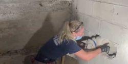 Cão desaparecido há 5 dias é encontrado preso em parede